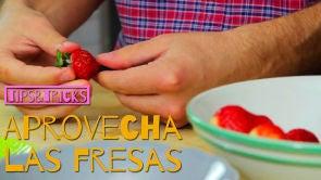 Aprovecha las Fresas