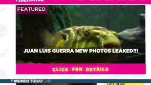 Juan Luis Guerra se opera para ser un pez