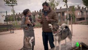 (14-11-18) De la llamada de Rajoy a recoger cacas de perro: así fue el 'Servicio Público' de Maíllo con Thais al ritmo de Clavelitos