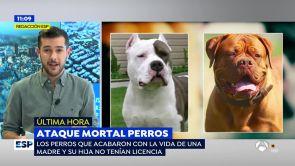 (23-11-18) Los dueños de los perros que devoraron a una madre y su hija podrían ser acusados de homicidio imprudente