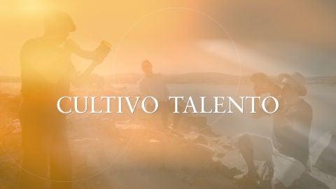 Cultivo talento