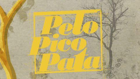 Pelo Pico Pata