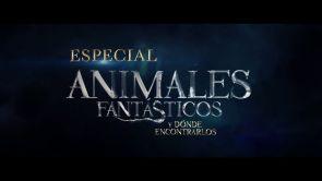 Especial Animales Fantásticos y dónde encontrarlos