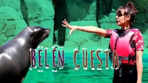 Entrenando leones marinos con Belén Cuesta