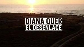 Diana Quer: El desenlace
