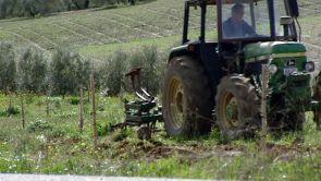 Villamucho y villapoco: ruta por la España desigual